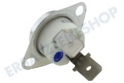 Thermostat-fix 155 Grad -bei Element-