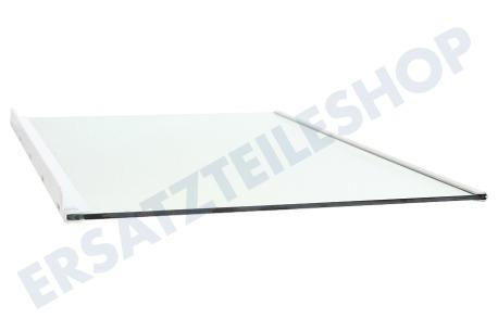 bosch glasplatte 447339 00447339 k hlschrank. Black Bedroom Furniture Sets. Home Design Ideas
