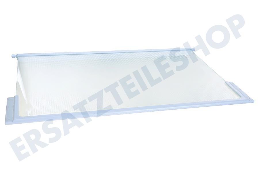 liebherr 9293003 glasplatte k hlschrank. Black Bedroom Furniture Sets. Home Design Ideas