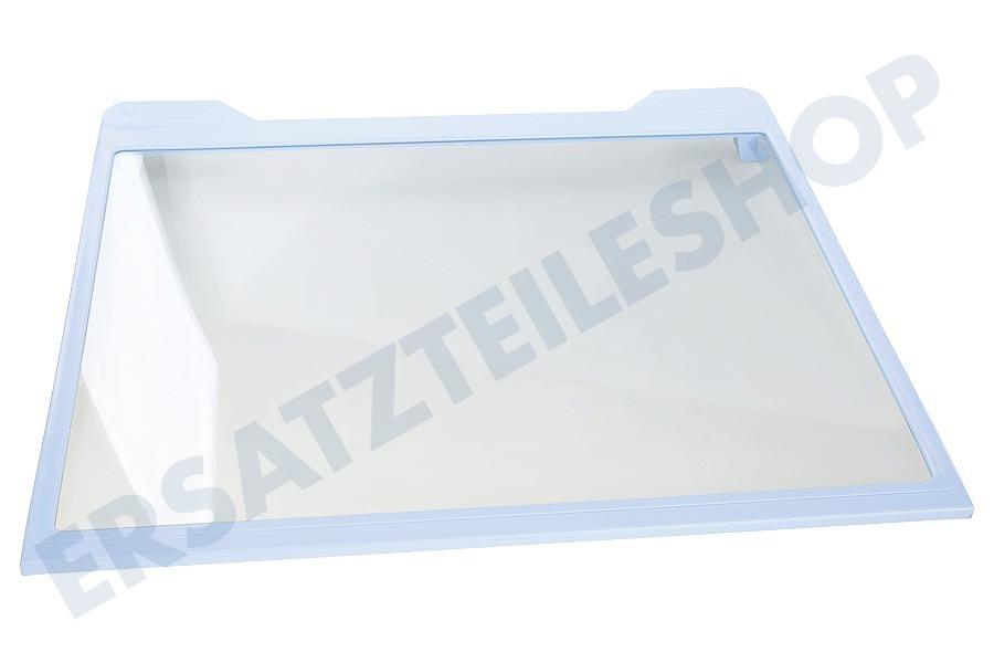 Siemens Kühlschrank Glasplatte : Samsung da6704253a glasplatte r54000k kühlschrank
